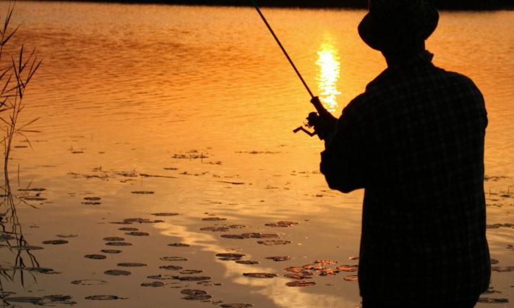 Fiske i vacker natur